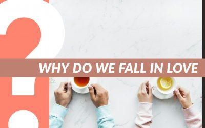 The 'Click' – Alasan Kenapa Kamu Jatuh Cinta